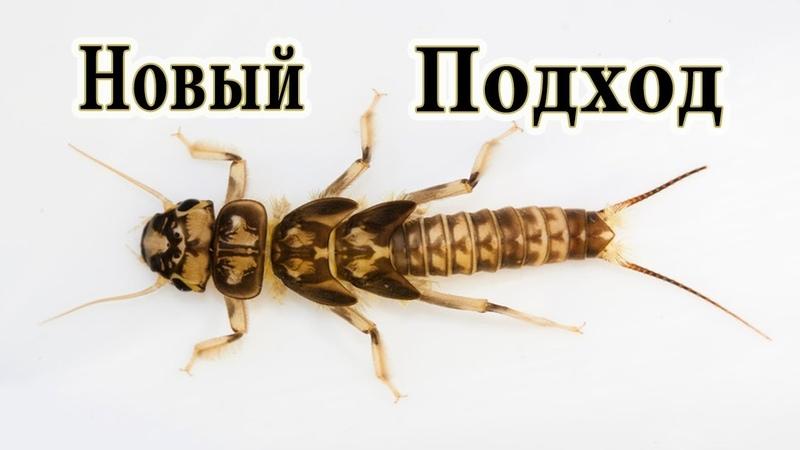 Новая Личинка Веснянки Сибирский Лов 100% рабочая Stonefly Nymph