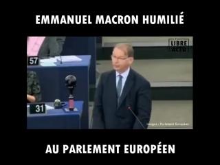 ✅😎 un député belge remet macron à sa place avec grâce et sans retenue