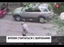 Люди в ШОКЕ ВОРОНЫ НАПАДАЮТ НА ЛЮДЕЙ(Санк-Петербург)