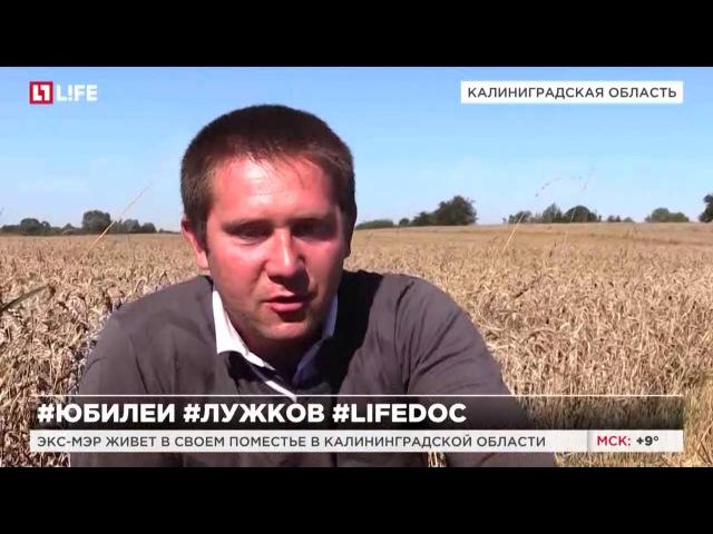 Старик и поле Фермер Лужков в прусском интерьере LifeDoc