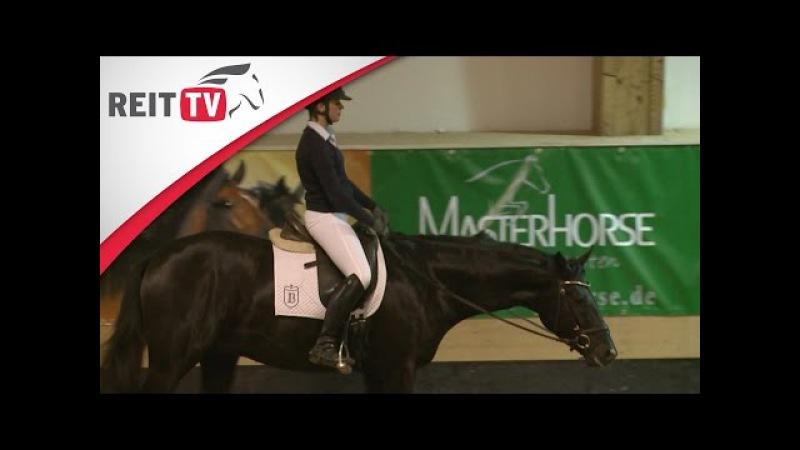 3х летний мерин, часть 2_Junge Pferde ausbilden - Alte Meister, Klaus Balkenhol in München Teil 2 | REITTV-Classics