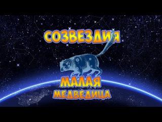 Малая Медведица. Познавательное видео для детей