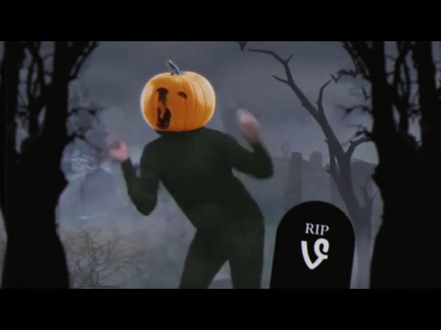 Gabe the Dog Spooky Scary Skeletons
