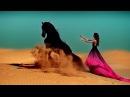 Очень красивый клип! Welcome To Mexico Dubstep