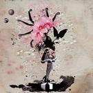 Обложка Maraquba - Tara Brooks, Pattern Drama