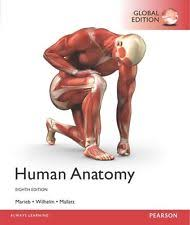 Mallatt, Jon  Marieb, Elaine Nicpon  Wilhelm, Patricia Brady-Human anatomy-Pearson (2017)