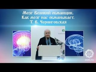 Мозг Великии обманщик. Как мозг нас обманывает. Т.В  Черниговская