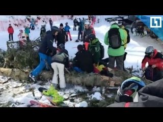 Момент падения дерева на сноубордистку в Сочи