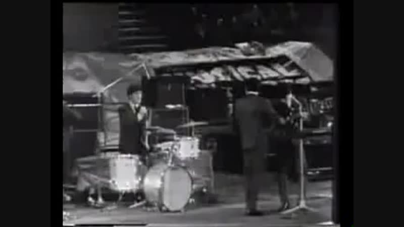 The Searchers Don t Throw Your Love Away 1964