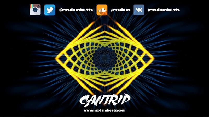 [FREE] Playboi Carti Type Beat 2019 - CANTRIP | Energetic | Trap instrumentals