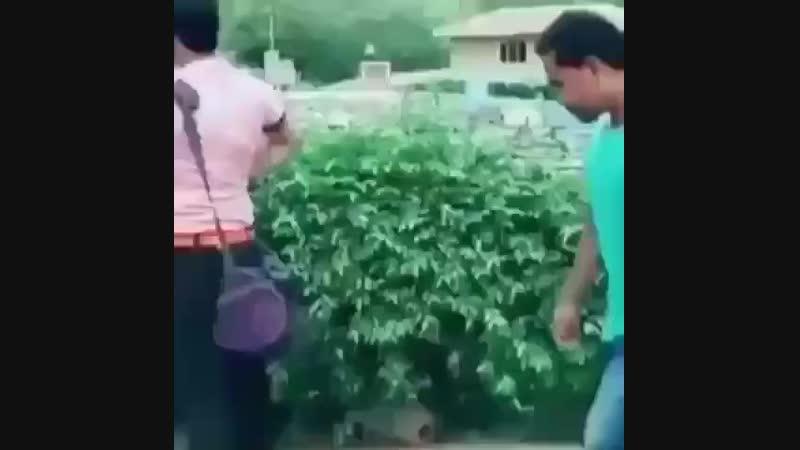Tag dong yg baju