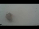 Norilsk 01 03 18 chernaya purga