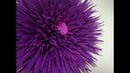 How To Make A Giant Crepe Paper Peony . Giant Aster, Peony Crepe Paper flower