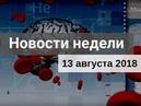 Медвестник ТВ Новости недели №129 от 13 08 2018
