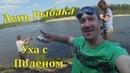 Рыбалка в Сибири на речке Чумыш. Уха на костре из окуней.