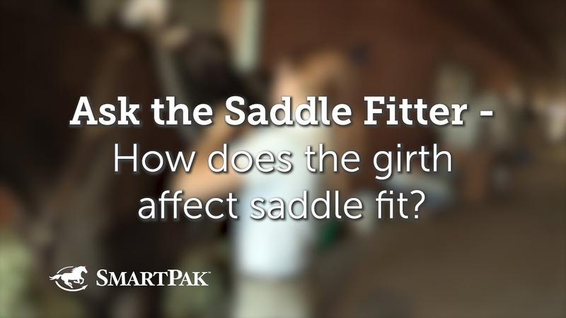Как подпруга влияет на посадку седла How does the girth affect saddle fit