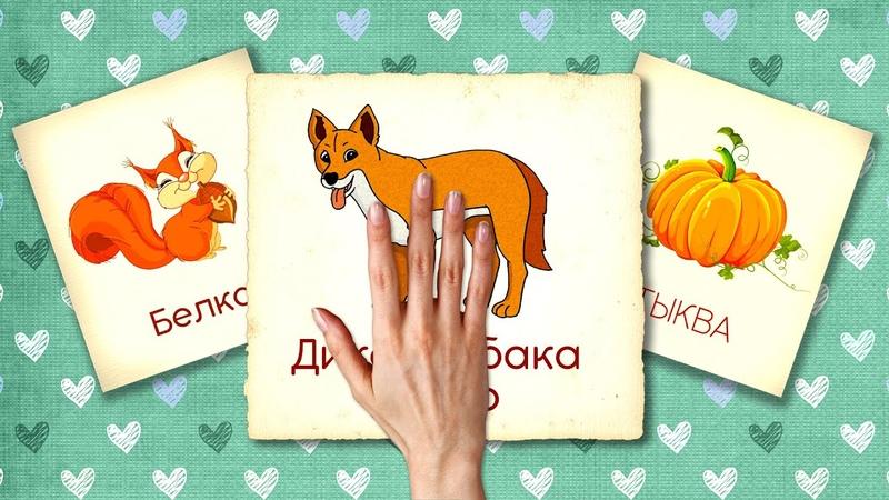 Сборник №7 20 минут Карточки Домана Развивающие мультики для детей