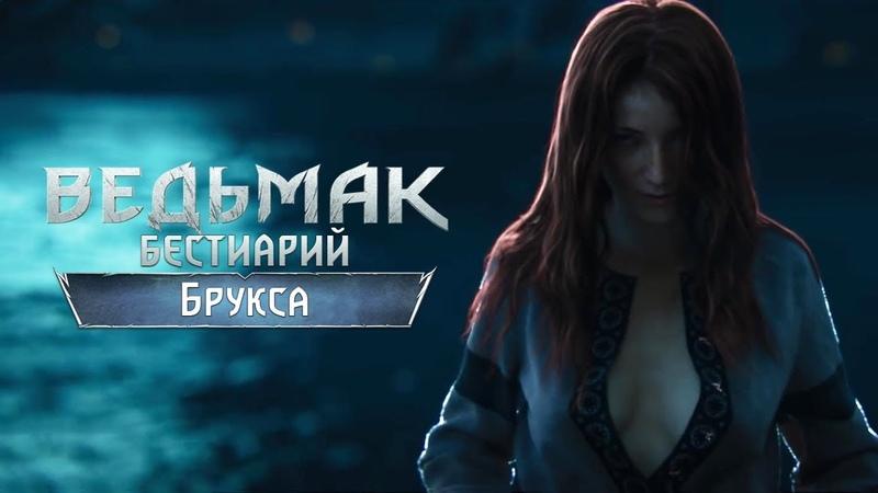 The Witcher 3. Бестиарий: Брукса и Ориана