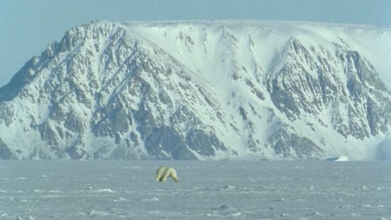Голубая планета 2001 4 Серия Замёрзшие моря
