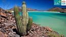 Baja California Sur - A journey through Mexico's Desert Paradise
