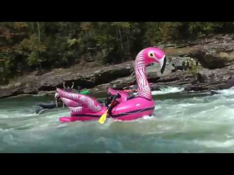 9 16 19 Upper Gauley Inflatable Pink Flamingo