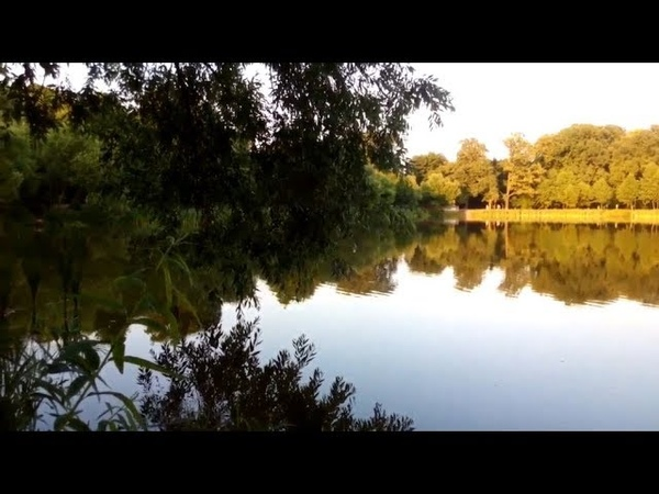 Кёниг 68 Озеро Летнее Балтрайон Калининград лето