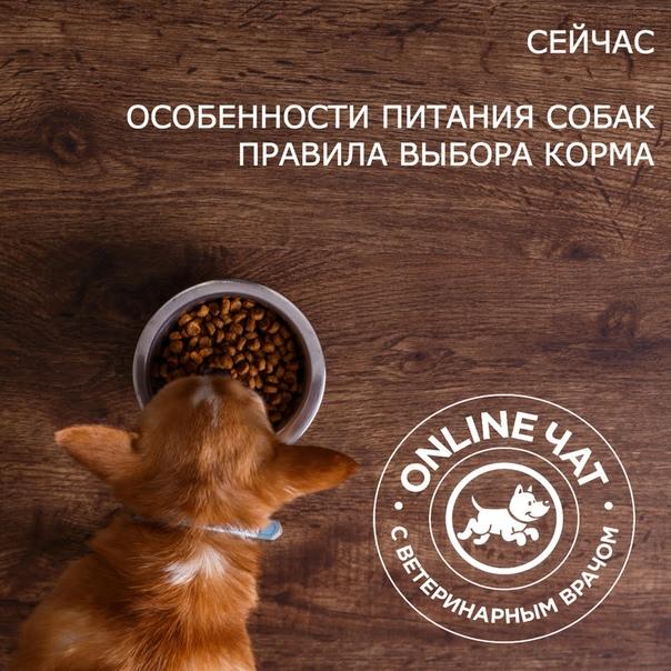 Royal Canin Gastro-Intestinal Low Fat (Роял Канин ГАСТРО