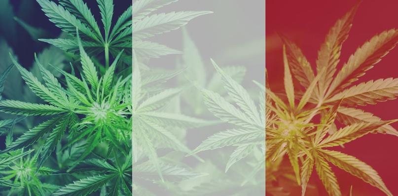 Мусульмане и конопля передоз от марихуаны