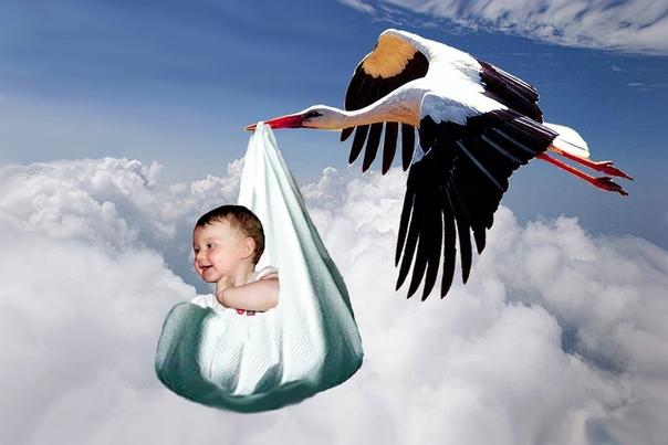 Младенец картинки с аистом