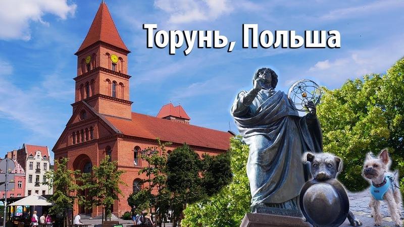 Торунь, Польша / Woof travel (путешествия с собакой на машине)
