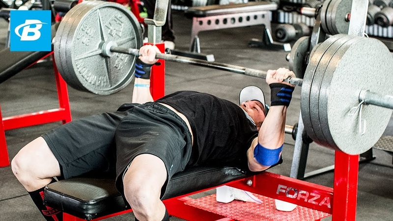 How To Bench Press Layne Norton's Complete Guide