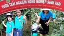 Gia Linh cùng các bạn trường mầm non MIPEC hái đậu trảy đỗ trong vườn sinh thái