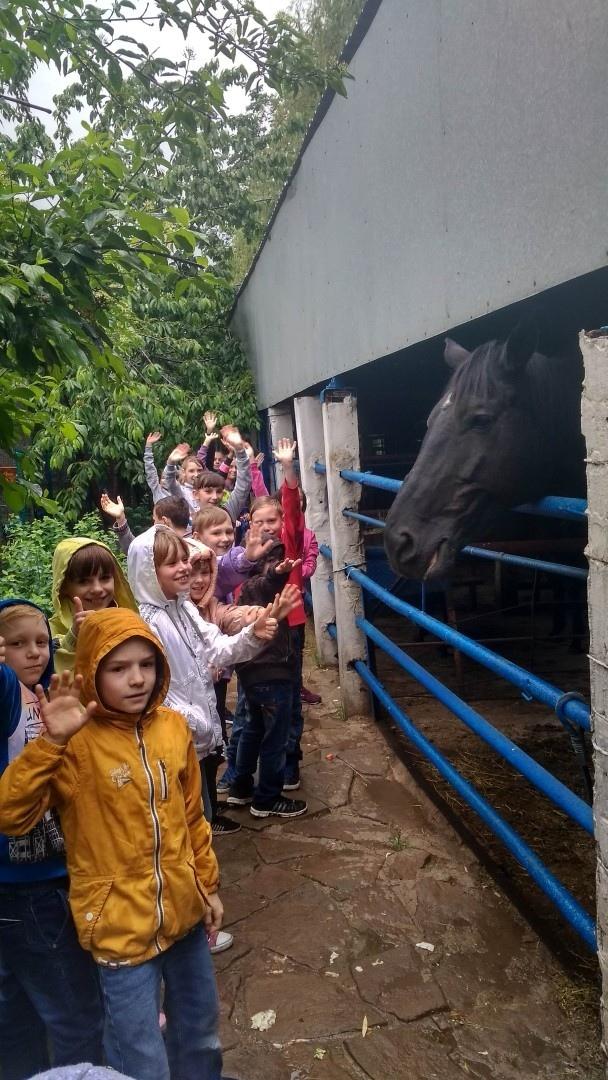 Поездка в зоопарк в Придорожное для детей -сирот