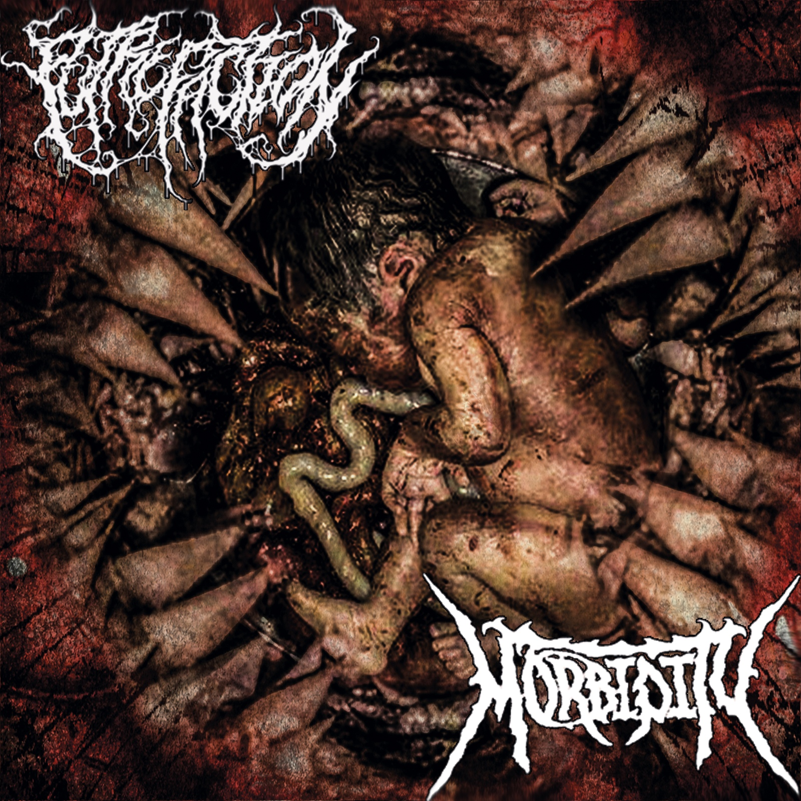 Morbidity, Putrefaction - Morbidity / Putrefaction [Split]