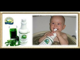 Жидкий хлорофилл-залог здоровья