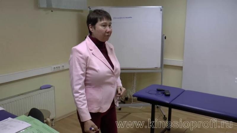 проф. Васильева. Кинезиологический массаж базовый курс (1 часть)