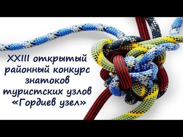 Гордиев узел 2019