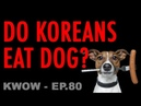 Do Koreans Eat Dog Meat KWOW 80