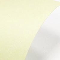Paperline 100 Ivory А4, 160 г/м2!  6 руб/1лист