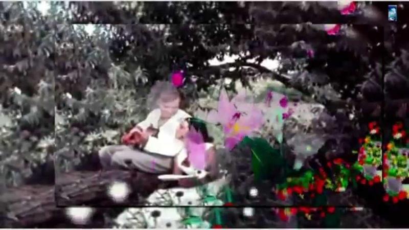 Ретро 50 е фокстрот Цветущий май клип