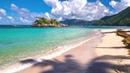 Olas Suaves para Relajar tu Vida Día y Noche - Sonidos de Una Playa Tropical