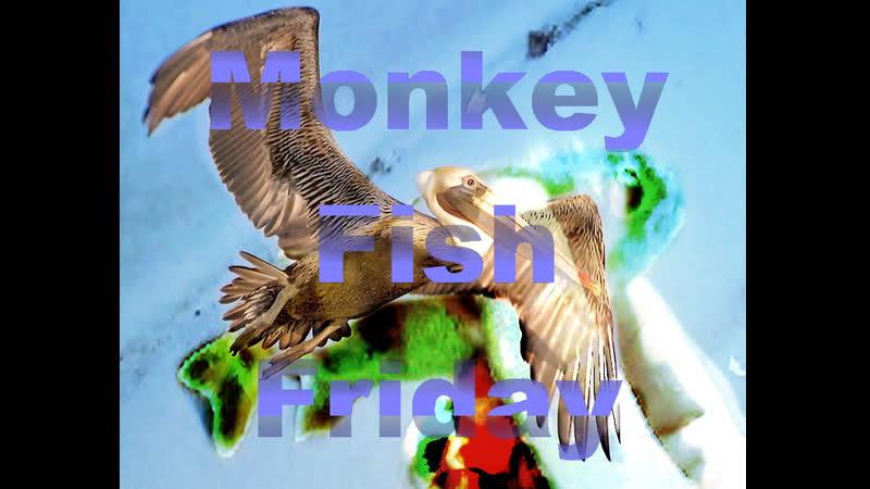 Monkey Fish Friday