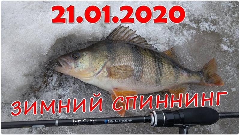 21.01.2020. Зимний спиннинг в черте города