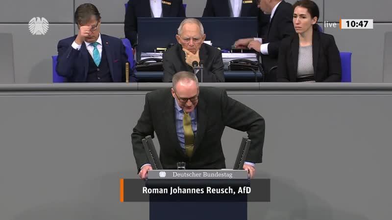 FDP und Grüne wollen bewährtes Fahndungsinstrument verbieten! Roman Reusch AfD Fraktion 1080p 25fps H264 128kbit AAC