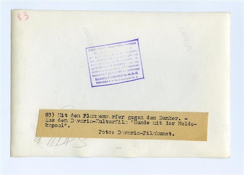 Рядовой вермахта Тассо, изображение №19