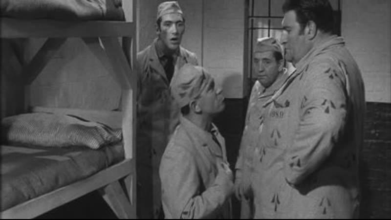 Мистер Питкин. Вверх тормашками 1956, Великобритания, комедия