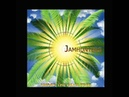 Jamhunters - Under the Palm Tree