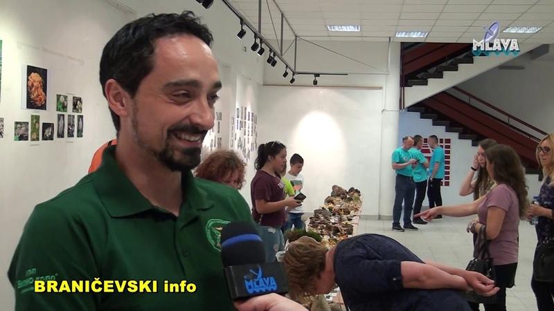 4. Letnja izlozba gljiva UGLJP Vilino kolo (RTV MLAVA 09.06.2019.)