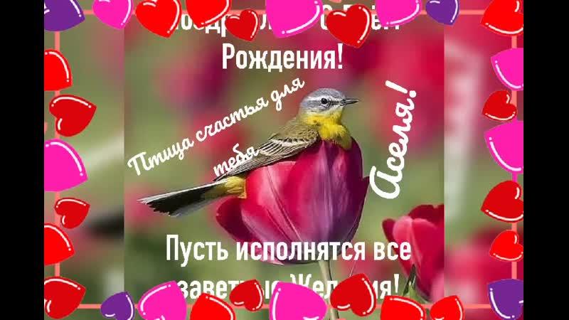С Днём Рождения Аселя‼⚘⚘⚘ Исполнения⚘⚘⚘😘😘😘💋💋💋 желаний,счастья,удачи,везения по жизни желаю тебе‼🙏🙏🙏🤲🤲🤲.mp4