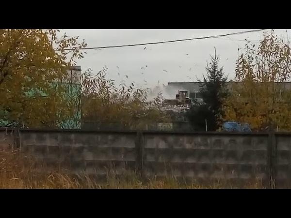 47news: Росприроднадзор нашел источник запаха гари в Янино